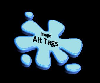 Image ALT Tags