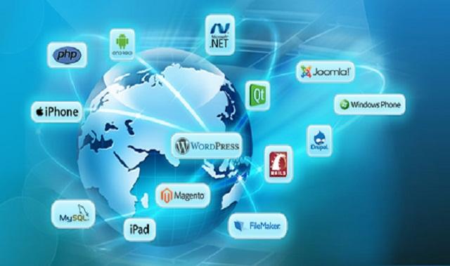 Web Development Company India