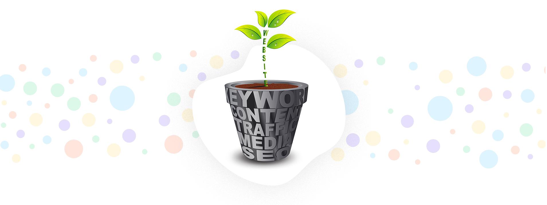 softqube design keyword content